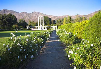 Winelands Tour